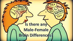 Mužský a ženský mozek jsou rozdílné. Co je jinak? A jak se to projevuje?